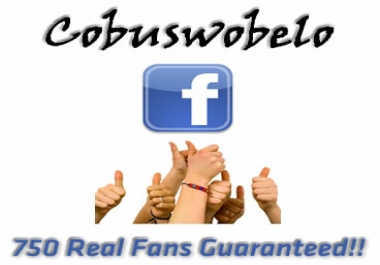 add 750 real people likes to your Facebook fanpage. There's no need for admin rights.