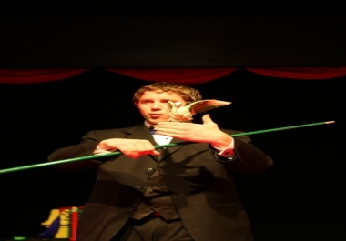 perform a professional magic show for any type of event requiring entertainment