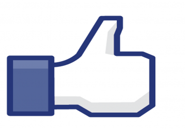 provide you 250 facebook likes