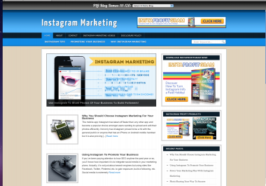 give you a blog about marketing with instagram niche monetized with clickbank and adsense ready all to make you profits with full sets of plugins to get you started