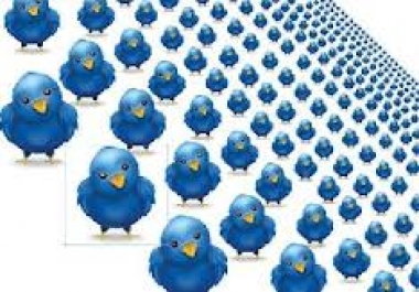 100 twitter account enabled with software to control them in that one