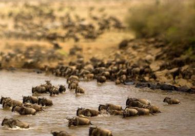 give you 20 best affordable places to visit in Kenya
