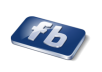give you 2000 facebook fans to your page