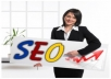 give you the ULTIMATE SEO service