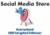 add a minimum of 1000 new TARGETTED followers on keyword AND location to your account so you can dominate Twitter only