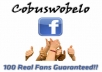 add 100 real people likes to your Facebook fanpage. There's no need for admin rights.