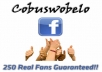 add 250 real people likes to your Facebook fanpage. There's no need for admin rights.