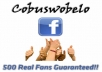 add 500 real people likes to your Facebook fanpage. There's no need for admin rights.