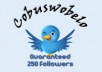 give you a new 250 followers for your twitter account so you can growing more fans