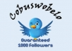 give you a new 1000 followers for your twitter account so you can growing more fans