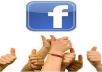 I Will GIve You My Fanpage Grabber Software