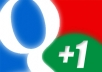 give you 100 real google plus one within 24 Hrs