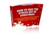 Give You How To Take The Stress Out Of Christmas eBook, Include PLR License