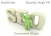 make three PR 3 or 4 blog comments all dofollow comments, your choice of keywords, build your seo backlinks