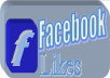 give you 2000 + FACEBOOK FAN Page LIKES