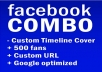 Brand YOU on f/b with this COMBO ( Custom timeline + 500 fans + Custom url  + Google optimized )
