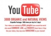 Provide 3000 quick YouTube Views to your Video