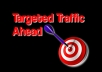 I will deliver laser targeted TRAFFIC to your website by making a software then submit it to 300 very high PageRank directories boosting your rank