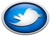 blast any message u want to 165000 TWITTER FOLLOWERS 3 DIFFERENT TIMES with link proof