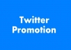 advertise your message or link Twice to my 5,000+ Real Twitter followers
