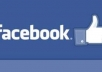 give you 1,000 likes on 1 Facebook fan page