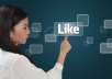 make you 400+ likes to your FB fanpages, websites, blogs in less than 24h