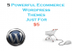 Offer 5 powerful ecommerce wordpress themes