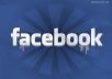 give you 250 real HUMAN facebook likes of your page