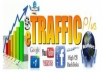 deliver real human traffic to your website for 1 full YEAR, adsense safe service