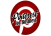 provide you 500 Pinterest Accounts