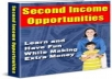 Show You In A Step By Step Fashion Some Second Income Opportunities
