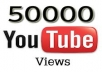 give you 50,000+ youtube views for your video under 48hrs