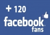 give you 120 Real Human Facebook Likes