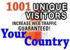 send 1001 USA visitors only to your website for 2 days