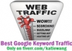 Let You have  Access To My  TRAFFIC Secrets  That  Guaranteed  Unlimited  Visitors EVERYDAY