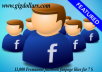 11,000 Permanent facebook fanpage likes, Manual work, Good Quality work