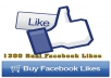 add 1300 Real Facebook Likes for your Fan-page