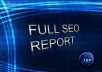 send you a full SEO report for your website