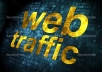 give you 1000 visitors hits to any website