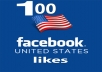 provide 100 facebook usa likes