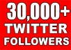 Provide You 30,000+ Real/Human/Unique/Active Twitter Followers 100% Safely.