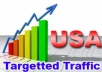 send 500K+ Unique Human Visitors(50 to 60% US Traffic) with proof to your Website