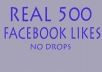 promote you 500 Real Facebook fanpage likes