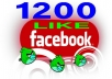 1200 Real Facebook Website Likes