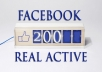 usa facebook Likes 200 plus REAL permanent