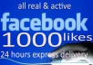 1000 facebook photo or Post like real fans
