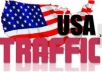I will drive 10,000 real human traffic to your website or blog.