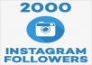 Give you 2000+ REAL Instagram Followers