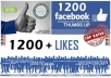 deliver REAL 1200 Facebook Likes