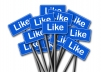 Give you 2000 Facebook likes on your Fan Page